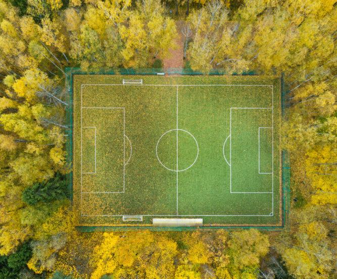 Article Positive football autour de la déforestation